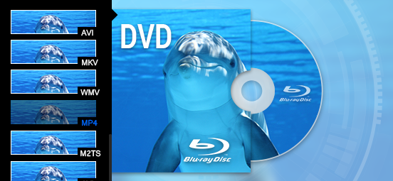 2017 Top 7 Best Free DVD Burning Software for Windows and Mac